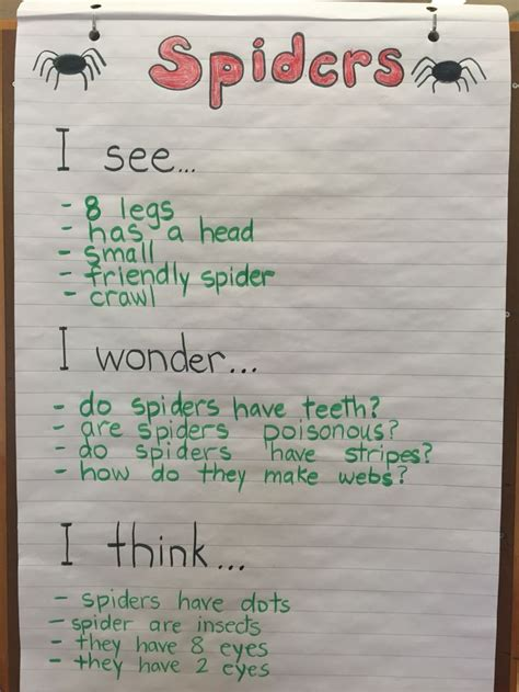 Letter Inquiry Kindergarten 17 Best Ideas About Kindergarten Inquiry On Reggio Inquiry Based Learning And