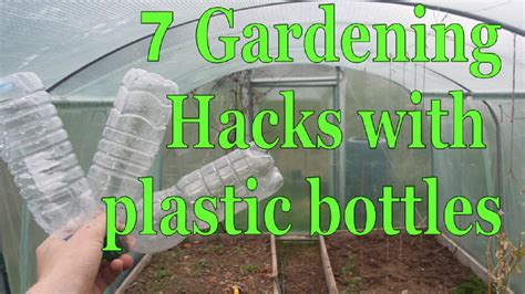 plastic plants for the garden 7 gardening hacks with plastic bottles simple free and