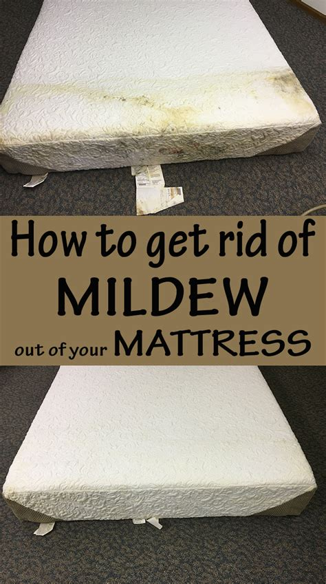 how to get rid of mildew out of your mattress