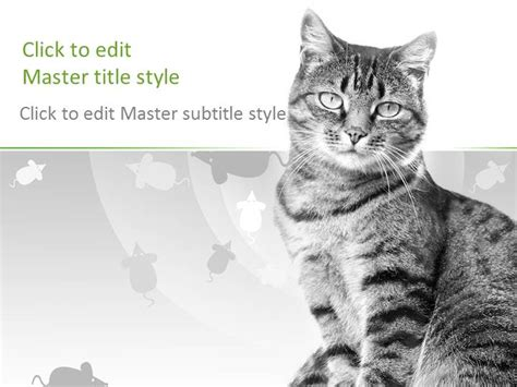 Free Cat Ppt Template Cat Powerpoint Template