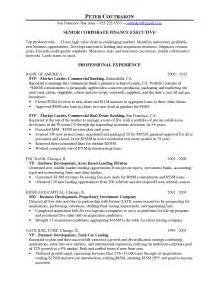 chief resume cover letter chief financial officer resume sles cover letter for