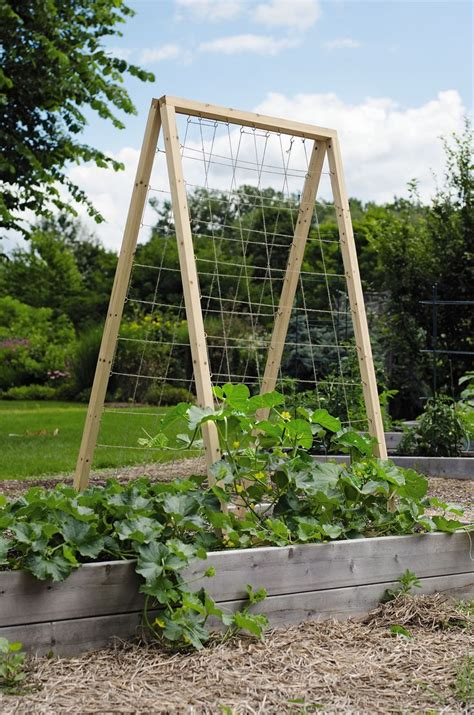 Vegetable Trellis New Twine Vegetable Trellis