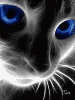 imagenes para celular animadas gratis zoom dise 209 o y fotografia gatitos gif con movimiento para