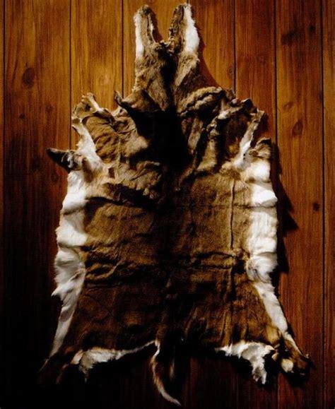Deer Tanned Cowhide - 1000 ideas about deer hide on leather hides