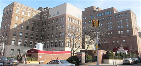 Snubs In Hospital by New York Methodist Park Slope Park Slope Hospital