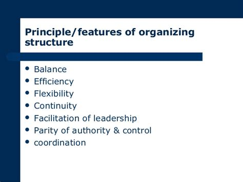 pattern of authority meaning organization