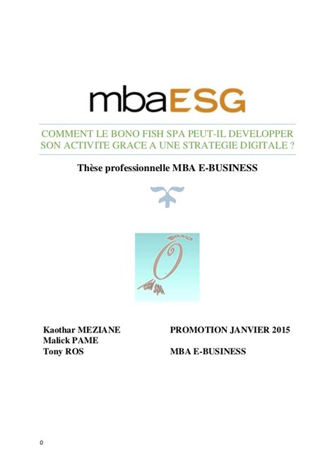Mba E Business by These Professionnelle Mba E Business Bono Fish Spa