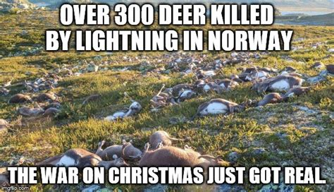 War On Christmas Meme - dead deer imgflip