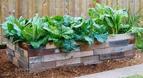 preparing  raised bed garden