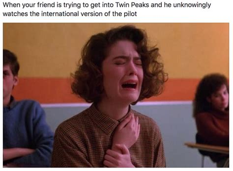 Twin Peaks Meme - 23 damn fine memes you ll only get if you love twin peaks twins movie tv and televisions