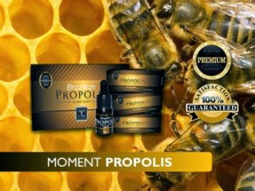 Ecer Propolis Moment New Pack propolis 100 original no 1 propolis nano technology