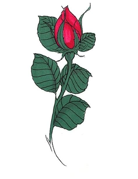 rose bud tattoo pictures buds tattoos