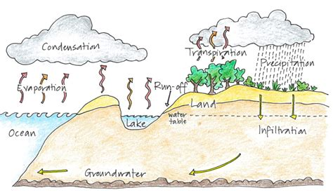 Water Cycle Essay by College Essays College Application Essays Essay On Water Cycle