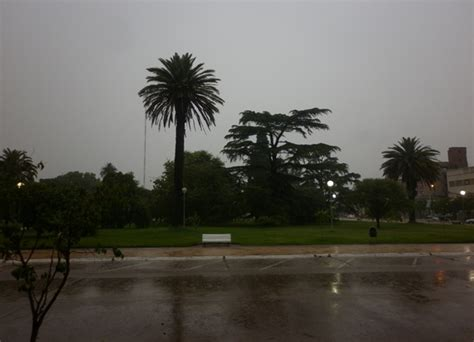 registro oficial 293 de julio 21 2014 la lluvia ca 237 da alcanza los 32 1 mms