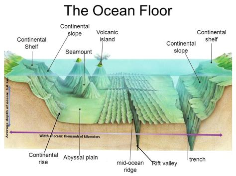 Continental Shelf Slope Rise by The Floor Continental Slope Volcanic Island