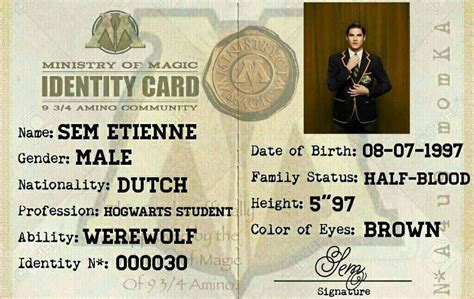 ministry of magic identity card template ministry of magic id card harry potter amino