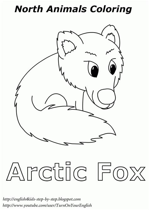 arctic coloring page arctic coloring page az coloring pages