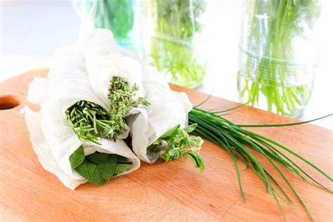 how to store fresh herbs the pioneer woman