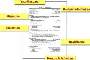 resumes sles for freshers