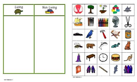 Living And Nonliving Worksheets by Living Things And Non Living Things Exercise