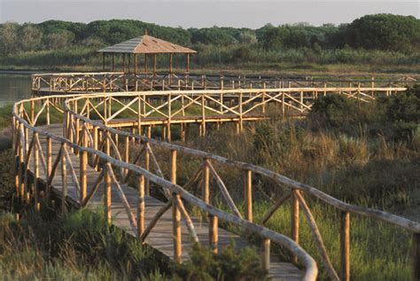 giardino botanico giardino botanico litoraneo di porto caleri