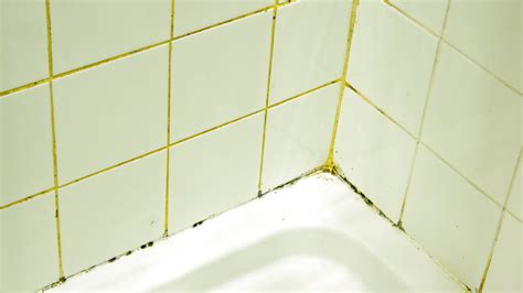 Removing Mould From Shower Grout by Tile And Grout Cleaning Tips To Prevent Mold And Mildew