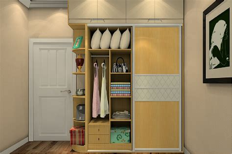 door and wardrobe interior design