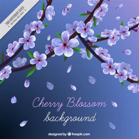 sfondo di fiori sfondo di fiori di ciliegio e petali scaricare vettori