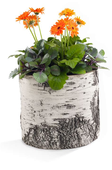 What Is Planters by Birch Planters Surreal Planters A Nature Innovations Brand