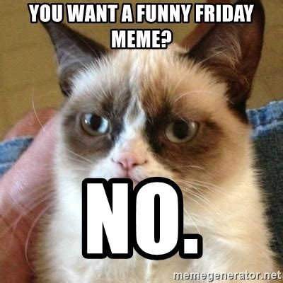 Friday Cat Meme - you want a funny friday meme no grumpy cat meme