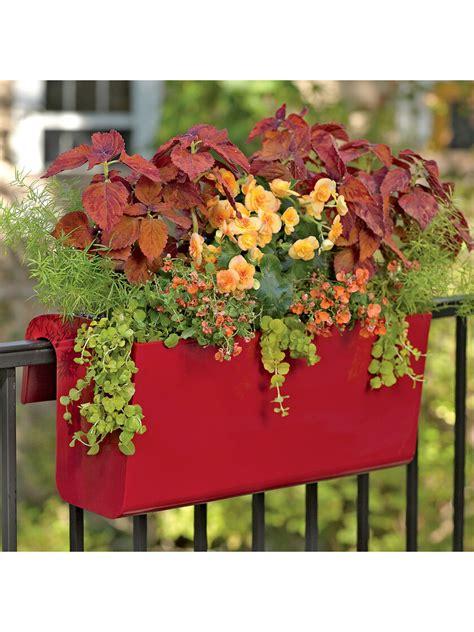 viva  watering balcony railing planter  orders