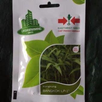 Benih Kangkung Bangkok 1 500 Butir benih kangkung bangkok lp1 500 biji panah merah