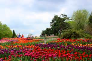 spring landscaping spring at minnesota landscape arboretum experience the