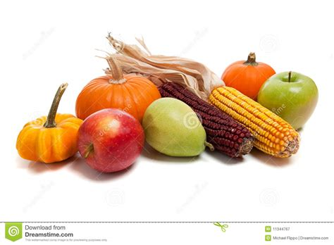 fall vegetables arrangement of fall fruits and vegetables stock image