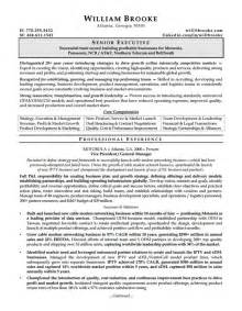 sle resume for ceo resume pdf
