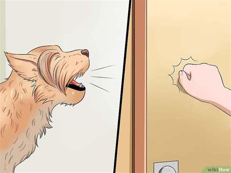 Bel Pintu Ketukan Pintu 4 cara untuk mengajari anjing berbicara wikihow
