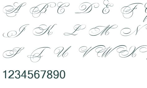 beautiful cursive alphabet fonts www imgkid com the