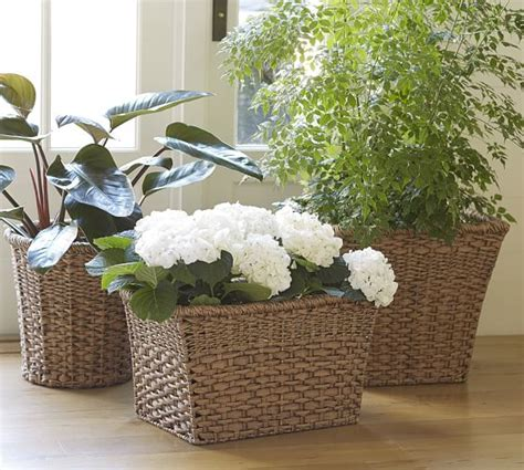 Pottery Barn Planters by Poly Planter Collection Pottery Barn