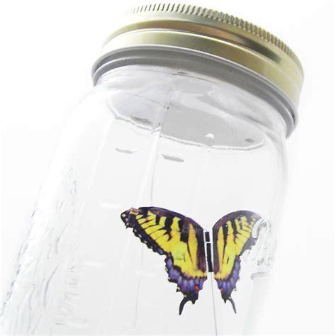 imagenes mariposas saliendo de un frasco mariposa en bote de cristal