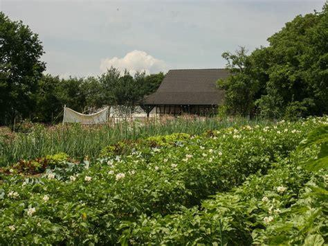 Garten Mieten Leverkusen by Meine Ernte Miete Deinen Gem 252 Segarten In Leverkusen