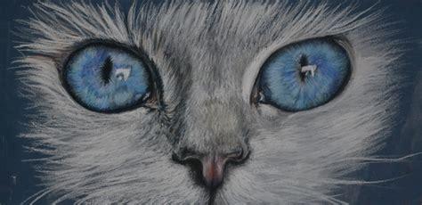 Blee Cat 2 felicity deverell pastel pencil cat s