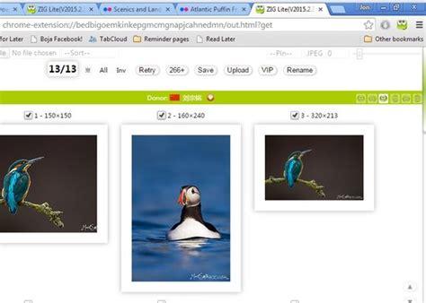 chrome image downloader 4 flickr image downloader extensions for chrome
