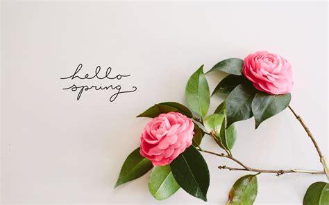 spring wallpaper hd tumblr diy foraged spring bouquet