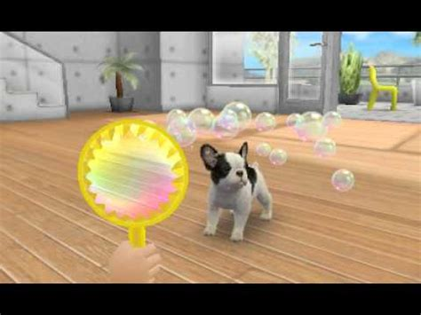 nintendogs and cats pomeranian 3ds nintendogs cats pomeranian how to save money and do it yourself