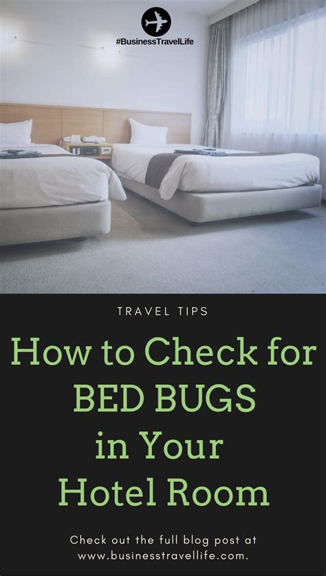 how to check for bed bugs in a hotel how to check for bed bugs in your hotel room business