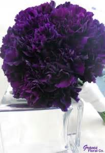 colored carnations purple carnations flowers