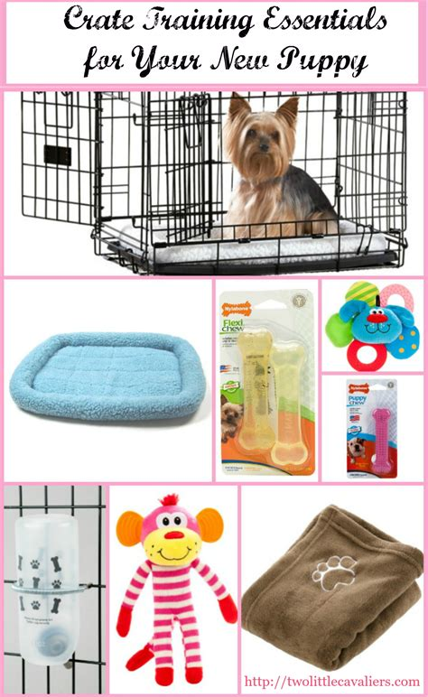 what to do with a new puppy new puppy crate essentials for cratehappypets