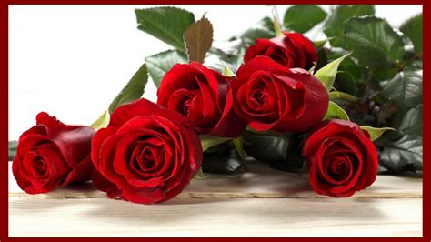 Valentines Day Roses by Happy S Day Wallpaper Free