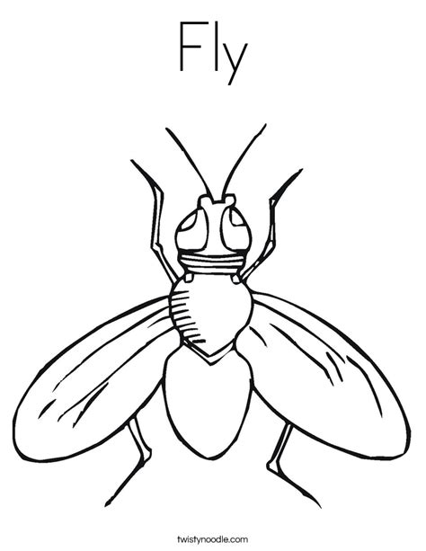 Fly Coloring Page Twisty Noodle Fly Coloring Page