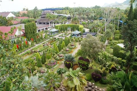 Nong Nooch Tropical Botanical Garden Elefantenmarsch Picture Of Nong Nooch Tropical Botanical Garden Pattaya Tripadvisor